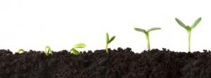 営業マンの成長・生産性向上